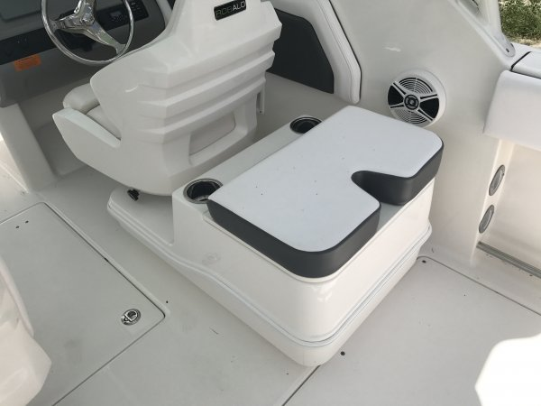 A 247 Dual Console is a Power and could be classed as a Bowrider, Cruiser, Deck Boat, Dual Console, Fish and Ski, High Performance, Saltwater Fishing, Sedan, Ski Boat,  or, just an overall Great Boat!